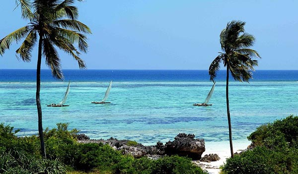 4 Best Activities In Zanzibar That You Should Try