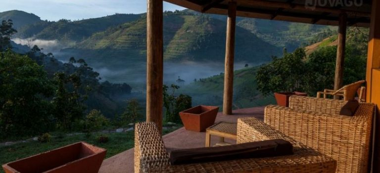 Here Are The Top Luxury Gorilla Lodges In Uganda
